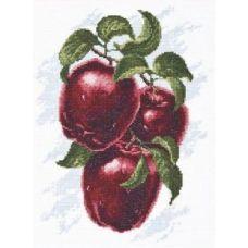 Набор для вышивания Спелые яблоки, 20x25, Палитра