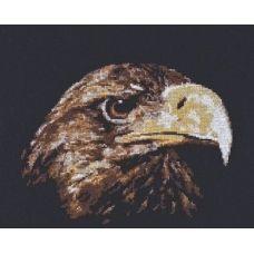 Набор для вышивания Взгляд орла, 26x22, Палитра