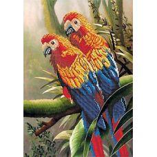 Рисунок на шелке Попугаи, 37x49 (26x38), Матренин посад