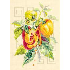 Набор для вышивания крестом Перец, 18x25, Чудесная игла