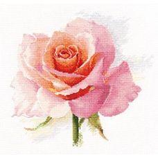 Набор для вышивания крестом Дыхание розы. Нежность, 24x24, Алиса