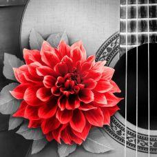 Мозаика стразами Цветок на гитаре, 25x25, полная выкладка, Алмазная живопись