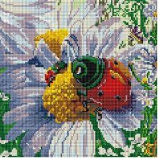 Алмазная мозаика Летняя жизнь, 30x30, полная выкладка, Белоснежка