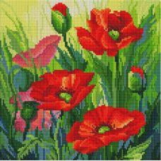 Алмазная мозаика Восхитительные маки, 30x30, полная выкладка, Белоснежка