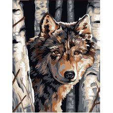 Живопись по номерам Волк среди берез, 40x50, Paintboy, GX6012