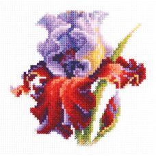 Набор для вышивания крестом Ирис, 11x11, Чудесная игла