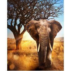 Мозаика стразами Африканский слон, 40x50, полная выкладка, Алмазная живопись