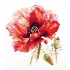 Набор для вышивания крестом Мак. Ярко-красный, 22x24, Алиса