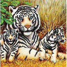 Канва с рисунком Тигры, 30x30, Божья коровка