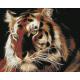 Живопись по номерам Неоновый тигр, 40x50, Hobruk, HS1140