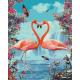 Живопись по номерам Пара фламинго, 40x50, Hobruk, U8010