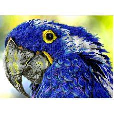 Набор для вышивания Попугай, 19x26, Вышиваем бисером