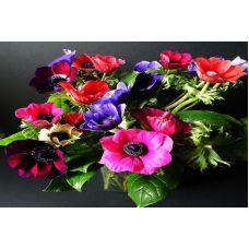Живопись по номерам Яркие цветы, 40x50, Paintboy, GX30550