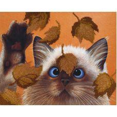 Набор для вышивания бисером Котик в листьях, 22x28, МП-Студия