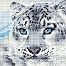 Алмазная мозаика Барс, 30x30, полная выкладка, Риолис