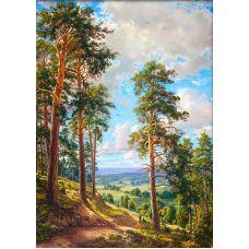 Мозаика стразами Орлиная песня, 50x70, полная выкладка, Алмазная живопись
