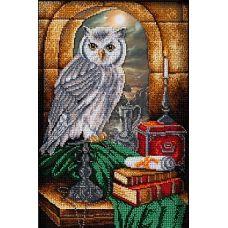 Набор для вышивания бисером Тайная комната, 26x38, Кроше