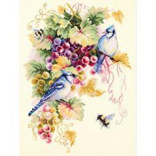 Набор для вышивания крестом Сойки и виноград, 25x35, Чудесная игла