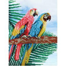 Набор для вышивания бисером Попугаи, 28x22, МП-Студия