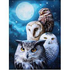 Мозаика стразами Ночные совы, 30x40, полная выкладка, Алмазная живопись