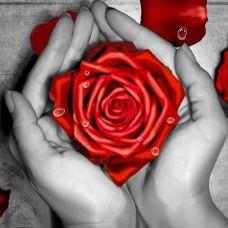 Мозаика стразами Роза в ладонях, 25x25, полная выкладка, Алмазная живопись