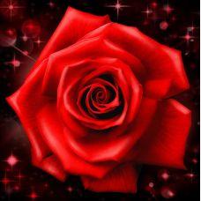 Мозаика стразами Сверкающая роза, 25x25, полная выкладка, Алмазная живопись