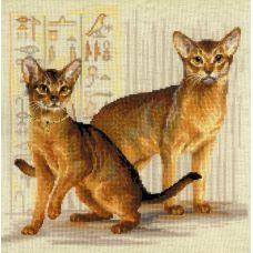 Набор для вышивания крестом Абиссинские кошки, 40x40, Риолис, Сотвори сама