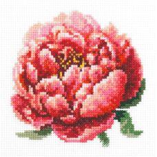 Набор для вышивания крестом Красный пион, 11x11, Чудесная игла