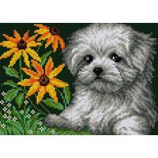 Алмазная мозаика на магнитной основе Белый щенок, 20x28,5, полная выкладка, Вышиваем бисером