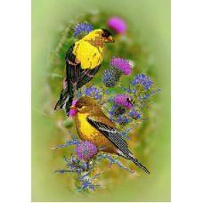 Схема Принт для вышивки бисером Птицы и чертополох, 25x36, Вышиваем бисером