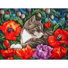 Живопись по номерам на картоне Кот в маках, 30x40, Белоснежка