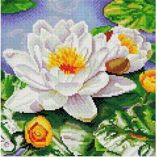 Алмазная мозаика Нимфея озерная, 30x30, полная выкладка, Белоснежка