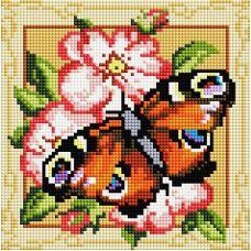 Алмазная мозаика Павлиний глаз, 20x20, полная выкладка, Белоснежка
