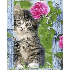 Живопись по номерам Котенок и роза, 40x50, Paintboy, GX8906