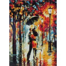 Живопись по номерам Вальс дождя, 40x50, Paintboy, GX7569