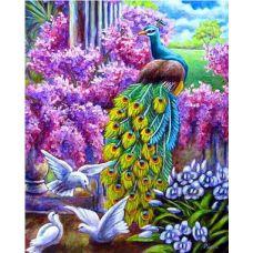 Живопись по номерам Павлин и голуби, 40x50, Paintboy, PB8129