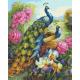 Живопись по номерам Гордые павлины, 40x50, Hobruk, U8069