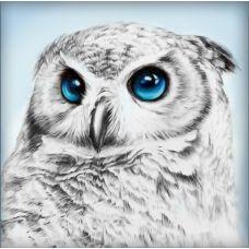 Мозаика стразами Взгляд совы, 25x25, полная выкладка, Алмазная живопись