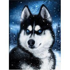 Мозаика стразами Хаски в снегу, 30x40, полная выкладка, Алмазная живопись