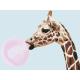 Живопись по номерам Модный жираф, 30x40, Hobruk, HS2048