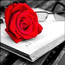 Мозаика стразами Роза и книга, 25x25, полная выкладка, Алмазная живопись