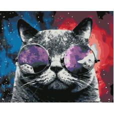 Живопись по номерам Космический кот, 40x50, Hobruk, U8012