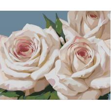 Живопись по номерам Бело-розовые розы, 40x50, Hobruk, HB0018
