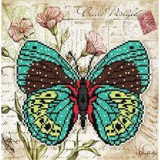 Канва с рисунком Бабочка 5, 25x25, Божья коровка