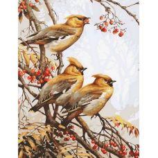 Живопись по номерам Зимние птицы, 40x50, Paintboy, GX35829