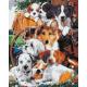 Живопись по номерам Верные друзья, 40x50, Hobruk, U8059