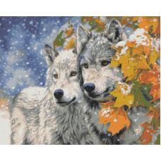Живопись по номерам Пара волков, 40x50, Hobruk, HS0145