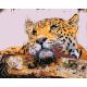 Живопись по номерам Задумчивый, 40x50, Hobruk, HS1139