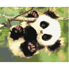 Живопись по номерам Панда на ветке, 40x50, Hobruk, U8017