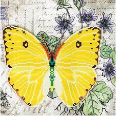 Канва с рисунком Бабочка 6, 25x25, Божья коровка